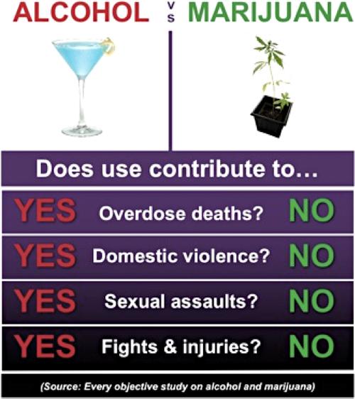 Marijuana vs Alcohol: How do they compare?